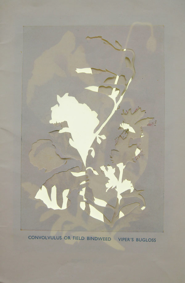Jo Howe Book Sculpture Experimentation